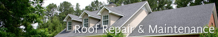 Roof Repair Services in NY, including West Islip, Deer Park & West Babylon.